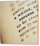 Definition Of Success Wood Print