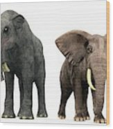 Deinotherium And Elephant Compared Wood Print