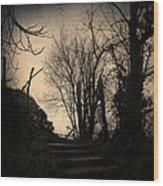 Deja Vu II Wood Print
