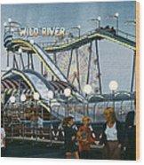 Del Mar Fair At Night Wood Print