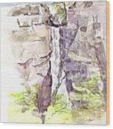 Del Sano Falls Wood Print