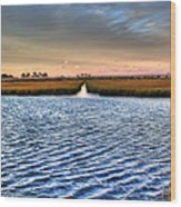 Delaware- Assawoman Bay Wood Print