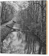 Delaware Canal In Black And White Wood Print