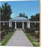 Delaware Park Rose Garden And Pergola Buffalo Ny Oil Painting Effect Wood Print