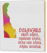 Delaware State Map Collection 2 Wood Print