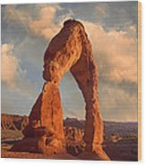 Delicate Arch In Arches National Park Wood Print