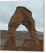 Delicate Arch View Wood Print