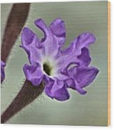 Delicate Flower Wood Print