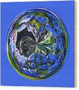 Delicate Orb Wood Print