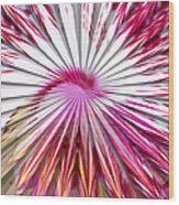 Delicate Orchid Blossom - Abstract Wood Print