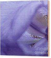 Delicate Purple Wood Print