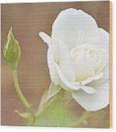 Delicate White Wood Print