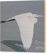 Delicate Wings In Flight Wood Print