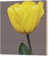 Delicate Yellow Wood Print