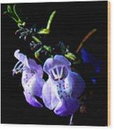 Delicately Purple Wood Print