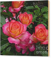 Delicious Summer Roses Wood Print
