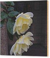 Delight Wood Print