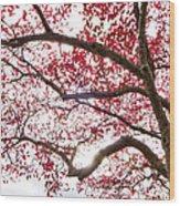 Delightful Fall Wood Print