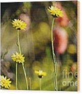 Delightful Florets Wood Print