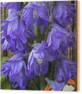 Delphinium And Butterfly Wood Print