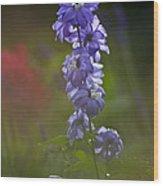 Delphinium Blossom Wood Print