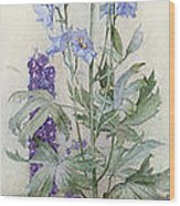 Delphiniums Wood Print by James Valentine Jelley