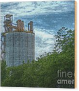 Delray Tower Wood Print