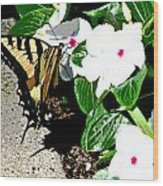 Delta Butterfly Cafe Wood Print