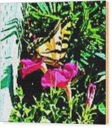 Delta Butterfly Dazes Wood Print