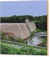 Delta Dam Wood Print