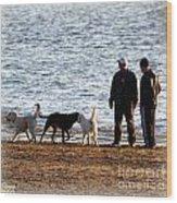 Delta Lake Beach Wood Print