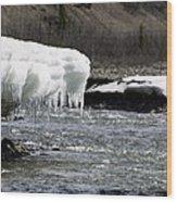 Denali Area Icicles  Wood Print