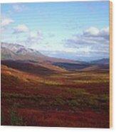 Denali In The Autumn Wood Print