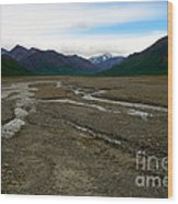 Denali National Park 3 Wood Print
