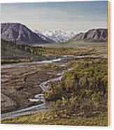 Denali Toklat River Wood Print