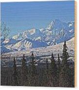 Denali Winter Wood Print