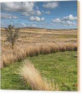 Denbigh Moors Wood Print by Adrian Evans