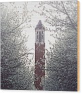 Denny Chimes Foggy Blossoms Wood Print by Ben Shields