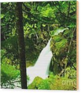 Denny Camp Falls  Wood Print