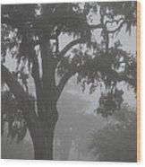 Dense Morning Fog In Oaks Wood Print