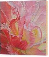 Dentelle de tulipe Wood Print
