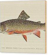 Denton Brook Trout Wood Print
