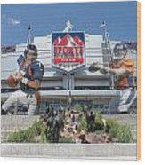 Denver Broncos Sports Authority Field Wood Print by Joe Hamilton