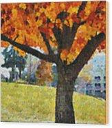 Denver Park 5 Wood Print