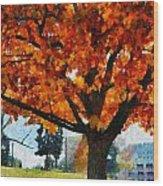 Denver Park 6 Wood Print