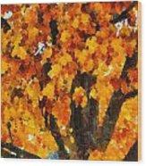 Denver Park 7 Wood Print