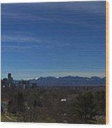 Denver, Colorado Skyline Wood Print