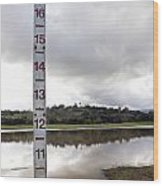 Depth Measuring Stick Lake Lagunita Stanford University Wood Print