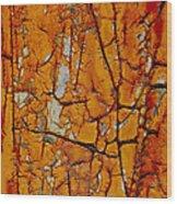 Deranged Wood Print