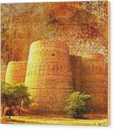 Derawar Fort Wood Print by Catf
